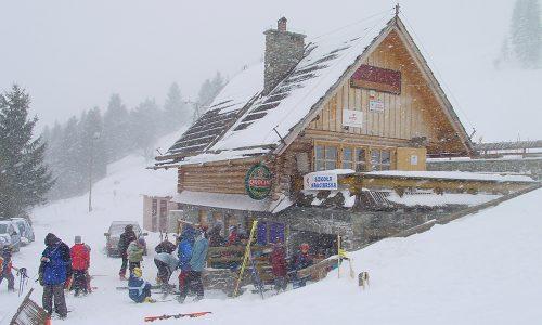 polana sosny stok narciarski